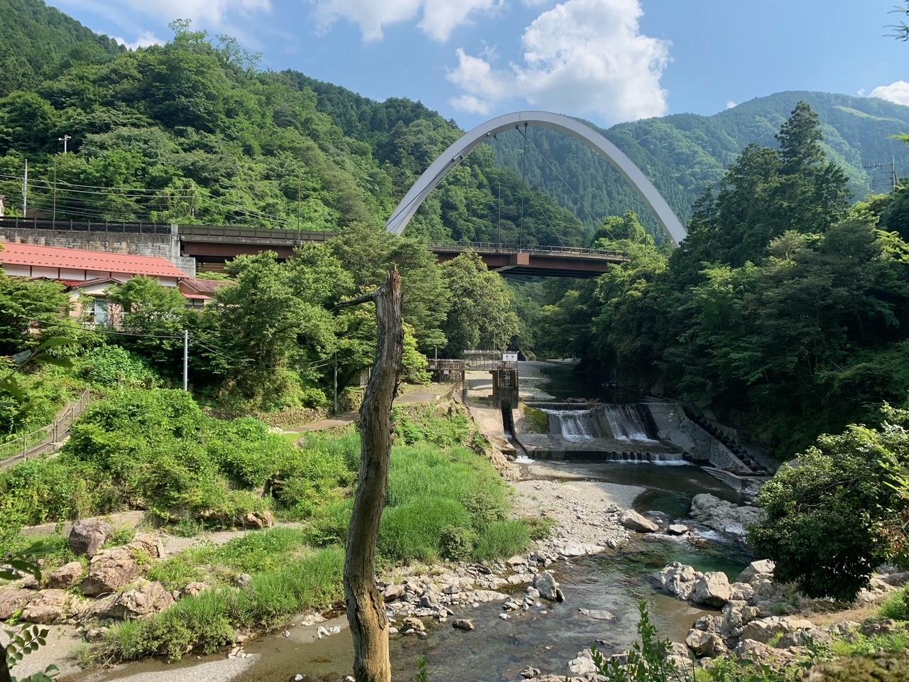 武蔵五日市 景色 森